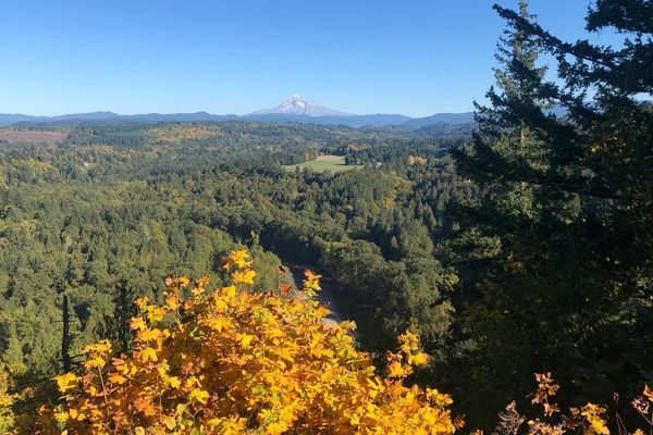 Chinook Trail – Mount Hood to the End in Portland, OR