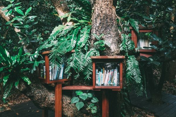 AT Hiking Books Written for Rookies Like Me