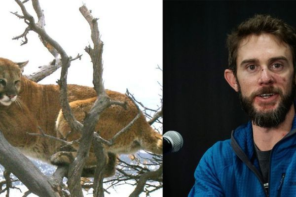 Travis Kauffman, Trail Runner Who Killed Mountain Lion with Bare Hands, Details Attack