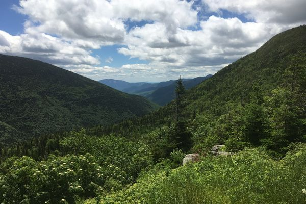 Finding Identity Through a Trail Name