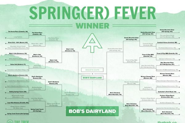 Springer Fever Final Results