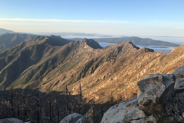 Days 11-14 on the PCT: Idyllwild to Cabazon
