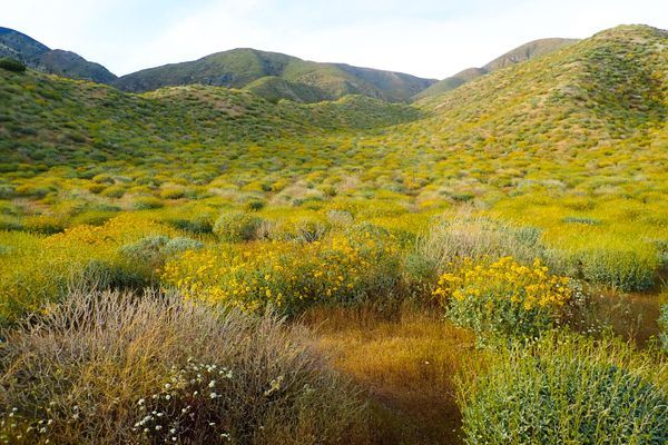 Trail Update – Mesa Wind Farm to Big Bear