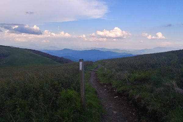 The Trail Always Provides: Tough Lessons via Tramily Drama