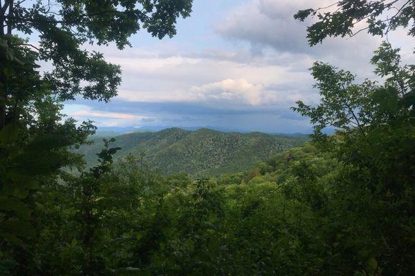 Faith, Trust, and Trail Dust