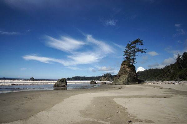 The End – Wild, Wet, Windswept Olympic Coast