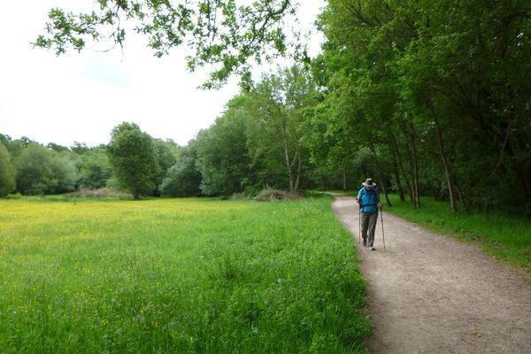 Giving the Gift of Hiking: Walking with Mom on the Camino Portugues