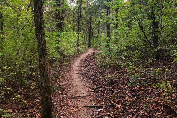Intentions for Thru-Hiking the Appalachian Trail