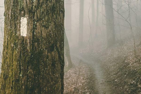 26 Gorgeous Appalachian Trail Photos to Help You Get Through the Week