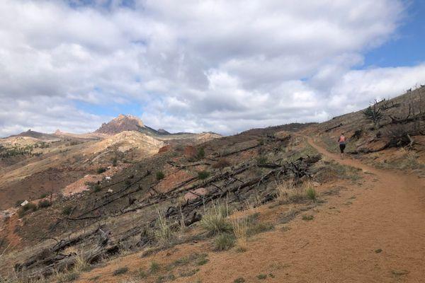 Colorado Trail Segment 2: The Burn Scar