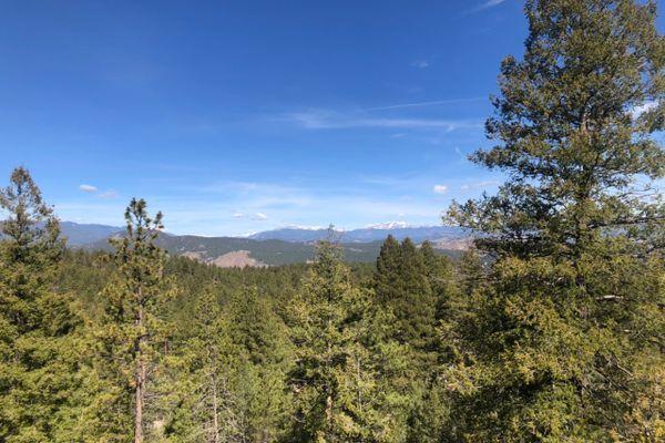 Colorado Trail Segment 3: The Bikers