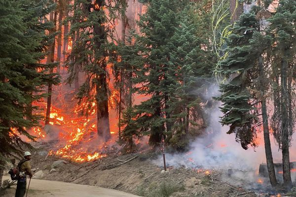 Why Are the 2020 Wildfires so Bad, and How Will They Affect the PCT?
