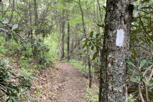 ATC Urges 2021 Hikers to Take Precautions, Consider Alternatives