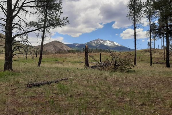 AZT Passage 34: Mountainside Views Near Flagstaff