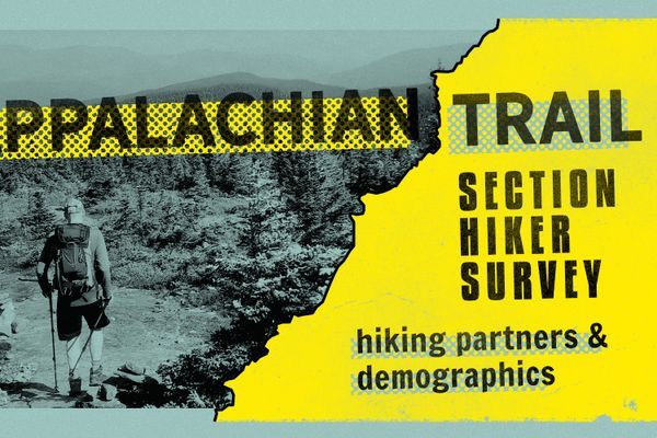 The 2020 AT Section Hiker Survey: Companions and Demographics