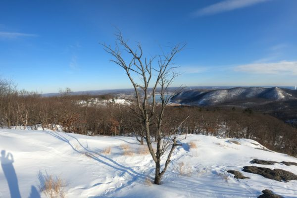 In Search of Cleaner Air: Why I'm Hiking the AT