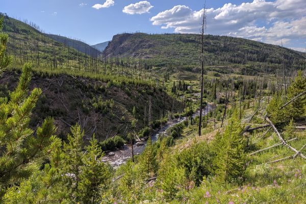 Hiker Intro: How I Became a Metalhead Hiker and Why I'm Hiking The Colorado Trail/CDT