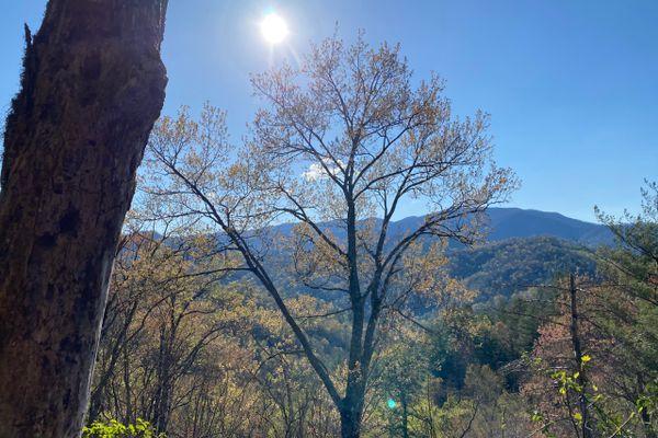 Simply Grateful:  Franklin to Gatlinburg