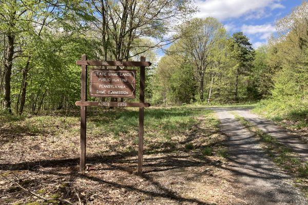 Mid State Trail days 4-6: Everett to Williamsburg