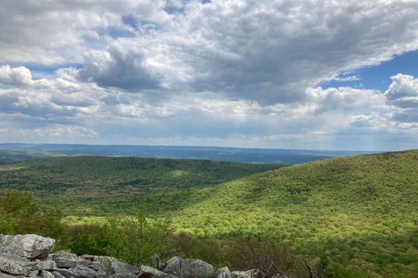 Mid State Trail Days 7-13: Williamsburg to State College