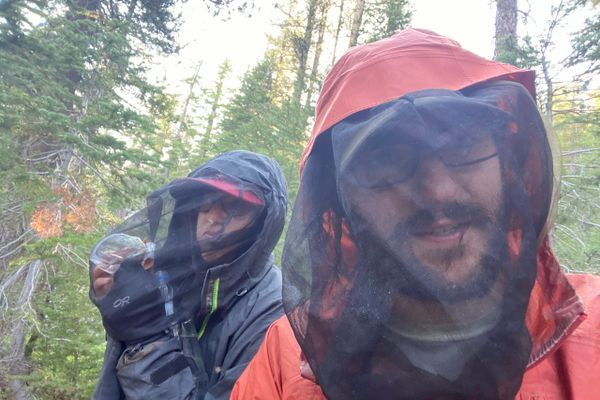 Welcome to Mosquitoville (Days 68 to 76, Tuolumne Meadows to South Lake Tahoe)