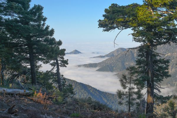 The PCT Isn't What I Thought It Was: My Top Discoveries