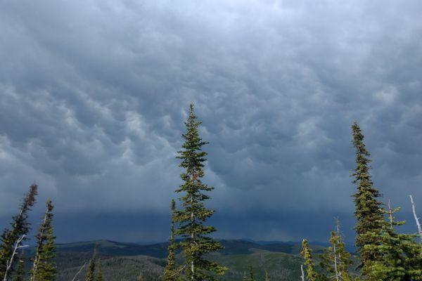 Lightning Strike Kills Backpacker Near Muir Trail Ranch