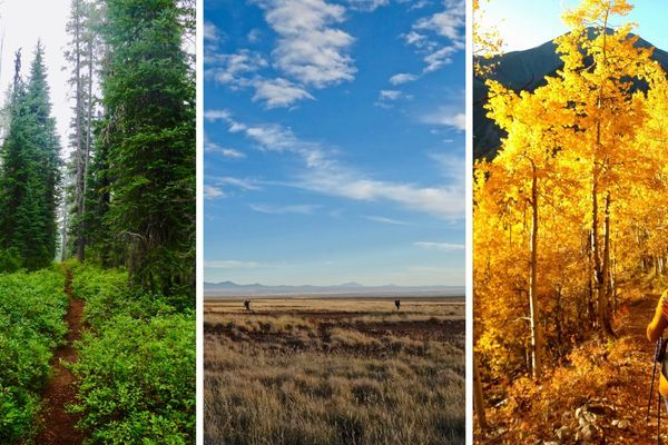 The Triple-Crown Everyone Should Be Talking About: Thru-hiking In A Warming Climate