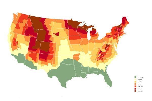This Map Predicts Peak Fall Color Change in Every US County