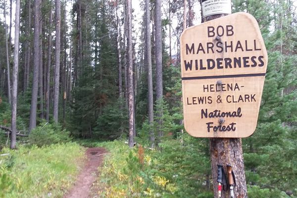 Week 14. CDT Thru-Hike. Scapegoat & Bob Marshall Wilderness.