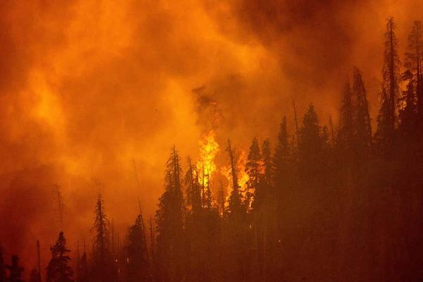 Claimed PCT Hiker Charged With Starting California's Fawn Fire